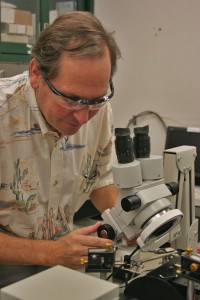 Research · Mark Thompson, co-director of the federally funded Energy Frontier Research Center, looks at samples with a microscope. | Dieuwertje Kast