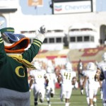 The Oregon Duck