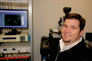 Heat wave · Professor David McKemy and his research team found the network of neurons that controls cold temperature sensations.  - Courtesy of David McKemy